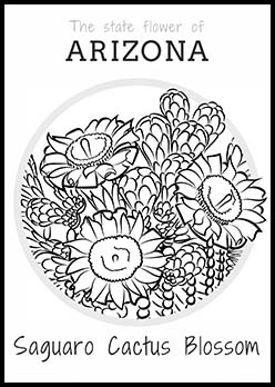 Free Arizona State Flower Coloring Page | Saguaro Cactus Blossom
